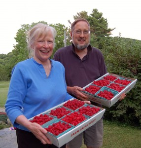 Larry and Susan Flaccus bring in the raspberries