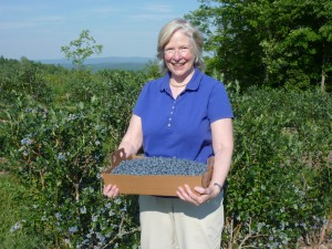 Susan picks blueberries